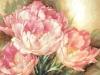 dim-tulip-trio