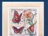 butterfly-00