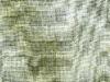 celadonlin