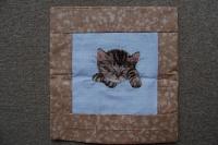 Nefie - Spící kotě