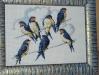 mimosa - Vlaštovky