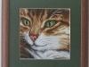 arvven - Closeup
